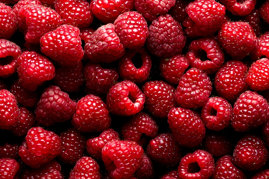 RASPBERRY-RED GOLD